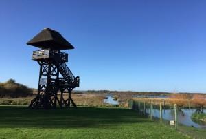 L'observatoire du marais Vernier